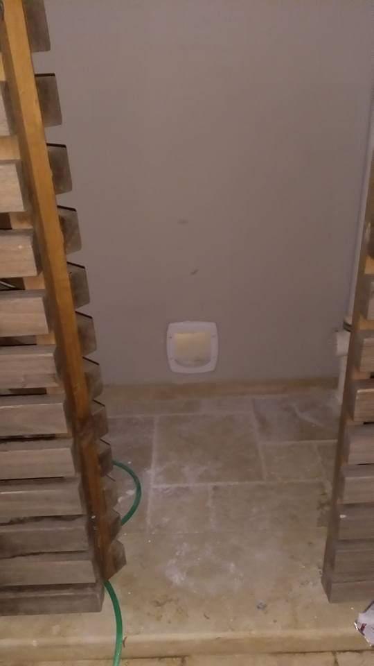 Duvara kedi kapısı
