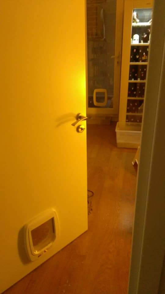 Kedi kapısı ferplast